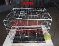 镀锌折叠铁丝鸽笼 拍卖笼 观察笼 隔离笼