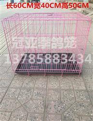 (5)可折叠铁丝鸽笼 拍卖笼 观察笼 隔离笼 展示笼 配对笼