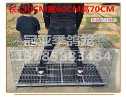 (4)可折叠铁丝鸽笼 拍卖笼 观察笼 隔离笼 展示笼 配对笼