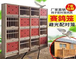 种鸽巢箱 赛鸽配对笼/信鸽组合巢箱/鸽子配对笼/鸽笼