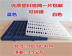 津羽王鸽具  塑料地网(尺寸50*50*4)