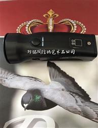 日版(jp版)电子鸽哨