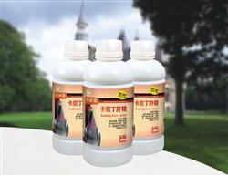 【包�]】卡尼丁肝精--快速�a充�S生素、�解�|,平衡氨基酸