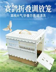 赛鸽专用折叠报到笼