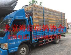北京海淀信鸽协会定制不锈钢/鸽笼/放飞笼