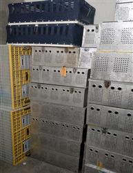 北京首航全国通信鸽托运