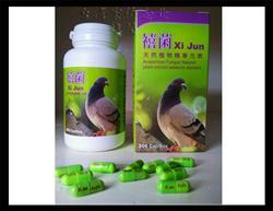 (包邮)台湾禧菌-罐装200粒