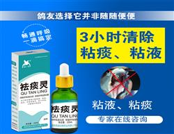 包邮【凯鸽祛痰灵】20ml/瓶 呼吸道粘液、浓痰、呼吸道炎症