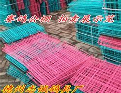 赛鸽公棚拍卖展示笼 宠物笼 铁丝笼