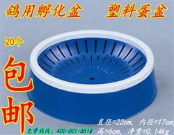 塑料巢盆 蓝色孵化鸽窝