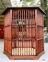 创意赛鸽展示笼