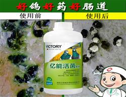 �h�Z威� 能活菌原液水便嗉囊炎����c道健康管家 超��整�c力、2小�r�效 生物止�a完美替代抗生素 消化不