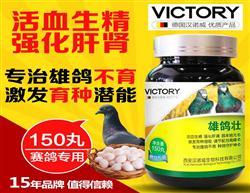 鸽药汉诺威雄鸽壮专治雄鸽不育激发育种活血生精强化肝肾用品包邮