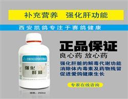 包邮凯鸽【强化肝精】保肝/护肾/强化肝脏