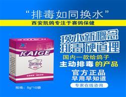 凯鸽【排毒宝】信鸽排毒/保肝护肝/赛鸽保健/正品鸽药