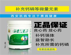 凯鸽药【钙磷粉】补充矿物质/钙磷微量元素/鸽子保健品/信鸽药品