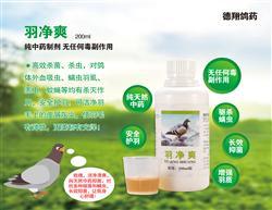 羽净爽-纯天然中药,长效抑菌,安全护羽