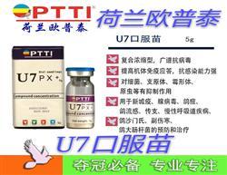 欧普泰U7口服苗新城疫、腺病毒沙门氏鸽流感、鸽痘、传支大肠杆