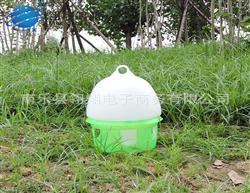 信鸽用品用具信鸽饮水器水壶鸽子水槽鸟用水壶8.5L