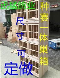 种赛一体巢箱 配对笼巢箱 全实木 赛鸽巢箱 厂家可定做