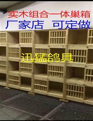 全实木巢箱 鸽笼 组合配对笼 赛鸽巢箱厂家可定做