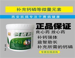 【钙磷粉】500g