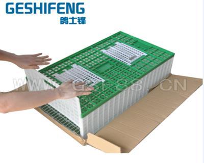 可折叠塑料运输鸽笼