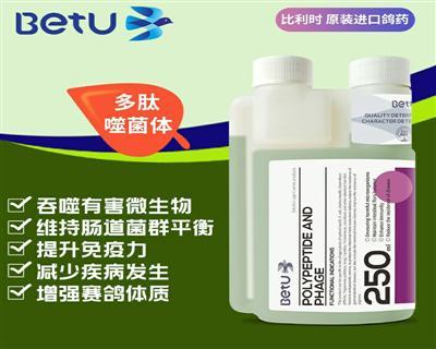 比特优鸽药-多肽噬菌体 溶液剂 比利时原装进口
