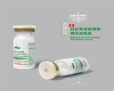 巴拉米哥粉剂灭活苗