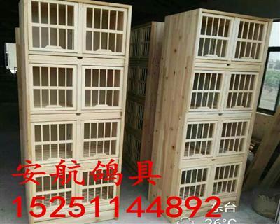 幼鸽巢箱鸽子巢箱实木巢箱养殖鸽