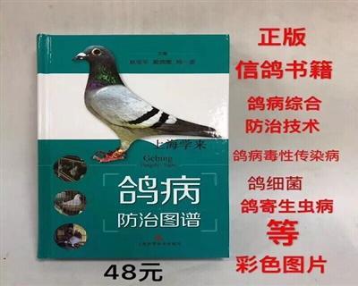【鸽病防治图谱】畅销书籍正版养殖 信鸽子书刊书籍赛鸽书