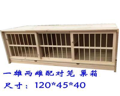 鸽子配种一雄配两雌箱实木鸽子笼配对箱养殖鸽笼信鸽笼鸽具