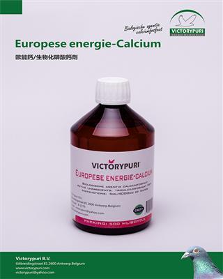 �W能�}/生物化磷酸�}��.液��(Calcium)