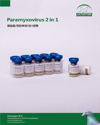 诺益灵/巴拉米哥2合1疫苗.滴剂