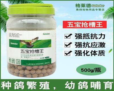 格莱德鸽药【五宝抢槽王】纯中药制剂+复合益生菌微生物 500克/罐