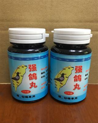 台湾强鸽丸 种幼鸽专用