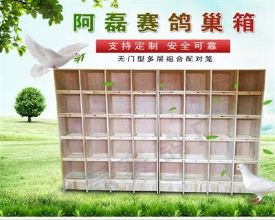 赛鸽巢箱 调节箱 鸽舍用休息巢