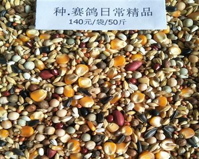种赛鸽日常精品粮