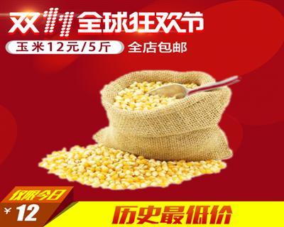 玉米粒饲料新苞米粒杂粮鸽子5斤装骏达全国包邮