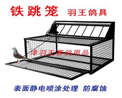 鸽子跳笼鸽具用品跳门