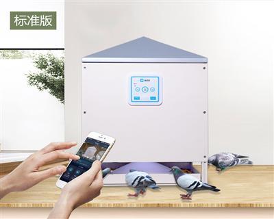 信鸽远程智能(定时、自动)投食器标准版