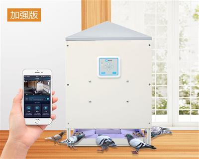 信鸽远程智能(定时、自动)投食器加强版