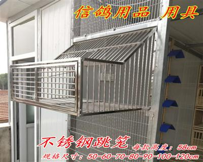 赛鸽跳笼 信鸽铁质折叠跳笼