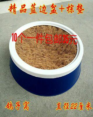 白圈兰盆十棕垫10个一件