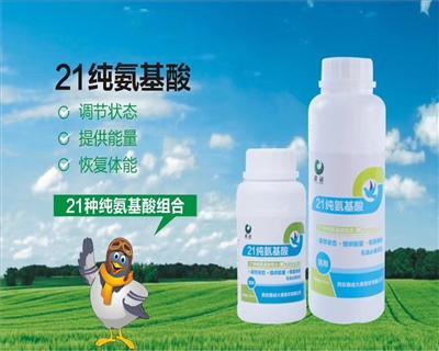 21纯氨基酸 500ml