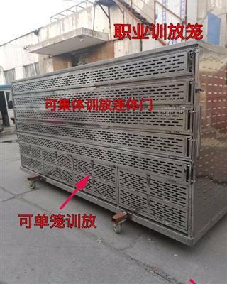 公棚集装放飞笼,专业驯放笼,可单笼开门,也可集体开笼