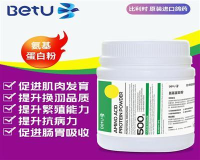 比特优鸽药-氨基蛋白粉 比利时