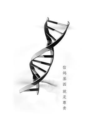 信鸽DNA身份证
