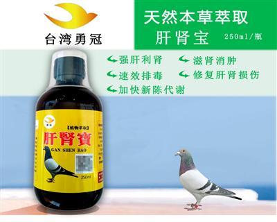 肝肾宝--强肝利胆、滋肾消肿、速效排毒、健脾利湿