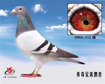 ��秀�N��2004-212雌